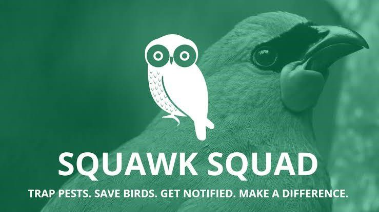 Squawk Squad Graphic